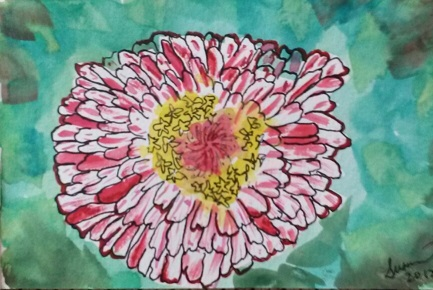 Zinnia blossom in watercolour and pen.